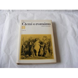 Čtení o románu
