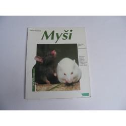 Myši  - jak na to
